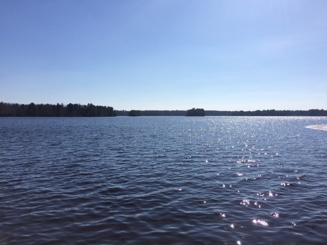 Catfish Lake 2016 open